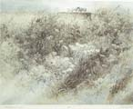 Vitaliy Gubarev: 'Blooming meadow'. Etching. 1994