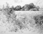 Vitaliy Gubarev: 'Summer day'. Pencil drawing. 1992